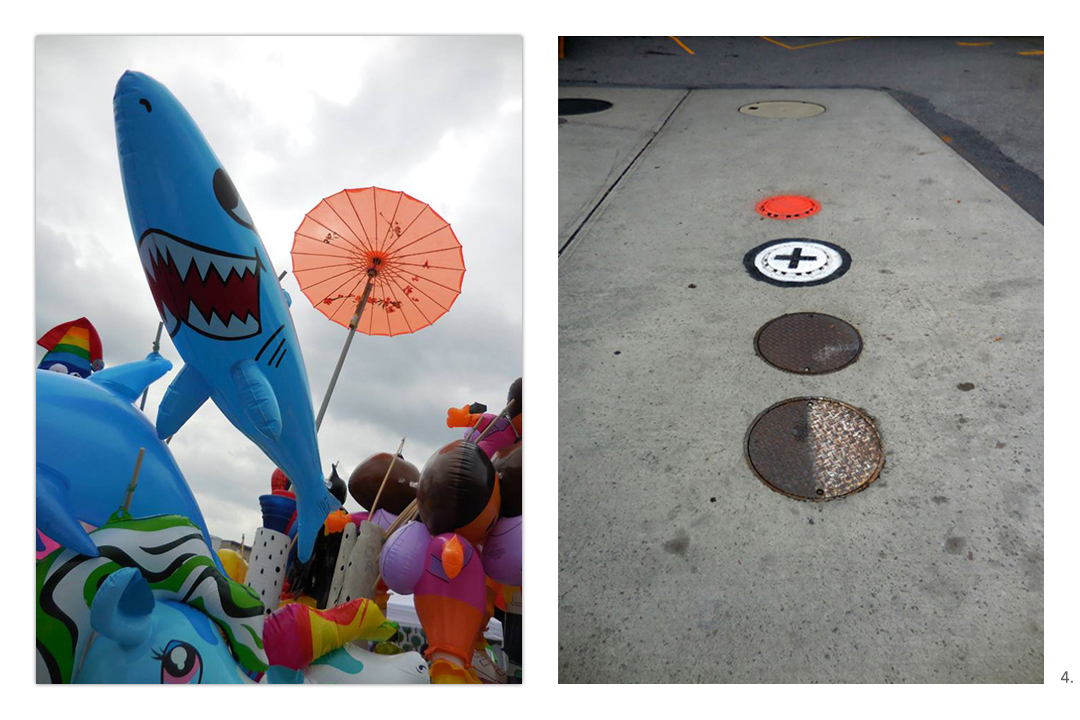 Shark Manhole Covers