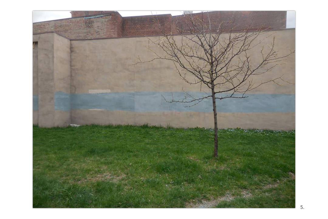 Blue Stripe Wall with Tree